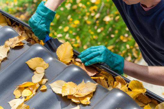 feature post image for Dachrinne reinigen - Schäden durch Feuchtigkeit verhindern und den Wert einer Immobilie sichern